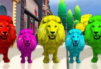 colorful lion daddy finger daddy finger where are you song for kids toddlers babies 200x137 - colorful lion daddy finger daddy finger where are you song for kids toddlers babies